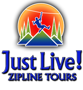 Just Live Zipline Logo