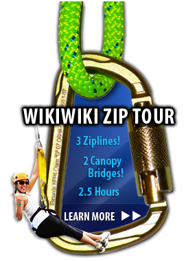 Wikiwiki Zip Tour